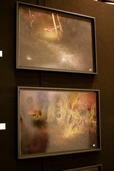 Photos exposées au salon art shopping